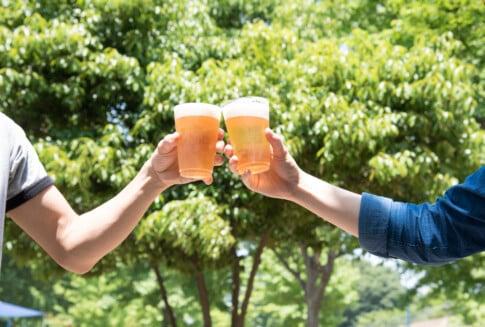 仕事仲間とビールで乾杯