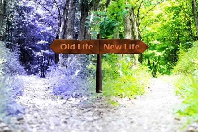 人生の分岐点、転職